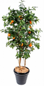Oranger artificel